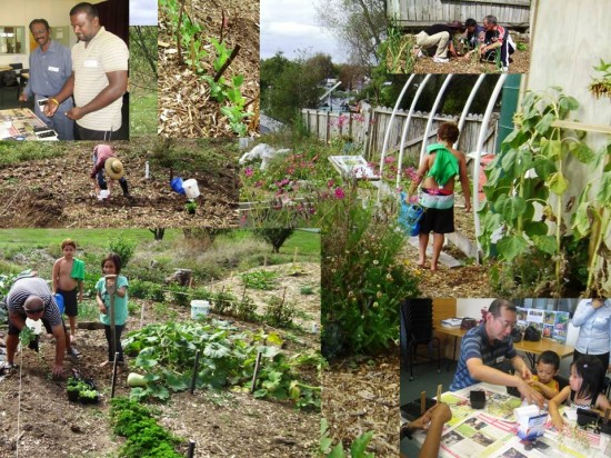 WIC gardeners sowing, planting and watering for a winter harvest