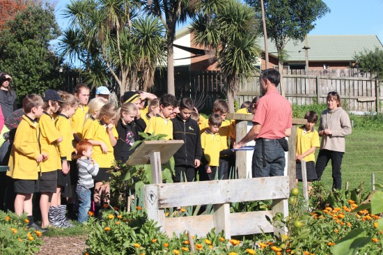 Hukanui School Sustainability Class visiting Grandview Community Garden